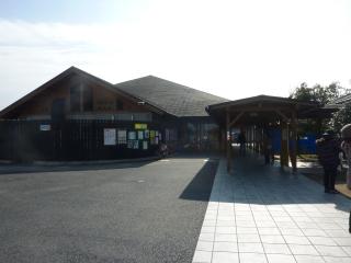20110066.jpg